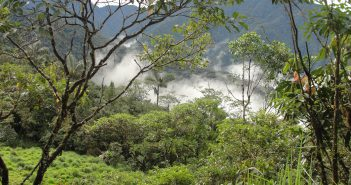 Prehistoric Jungle Tribes may have Practiced Land Management of Tropical Forests in Southeast Asia 70,000 years ago