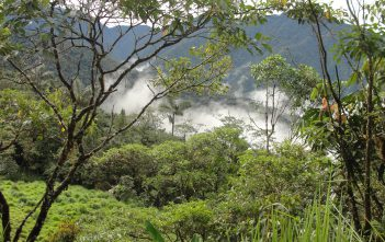 Deep jungle location ecuador